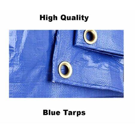Blue Tarps