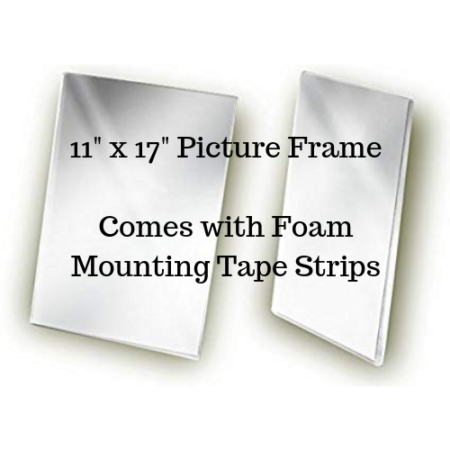 11_ x 17_ Picture Frame Comes with Foam Mounting Tape Strips
